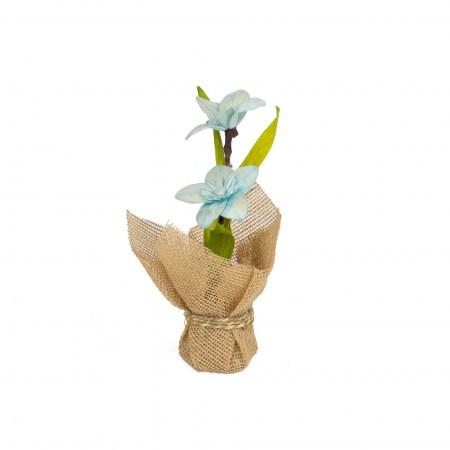 Vaso Flores Seca